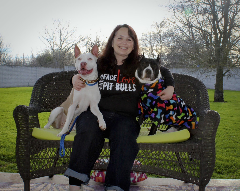 Chako's founder with her two Pit Bull valentines!